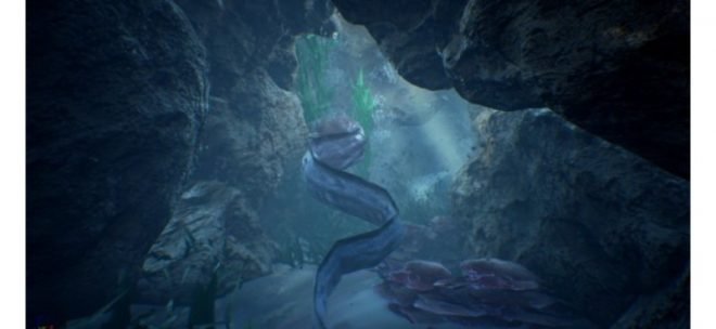 Eel swimming through underwater cave